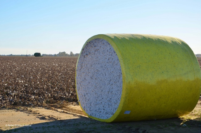 cotton bale USA from BCI