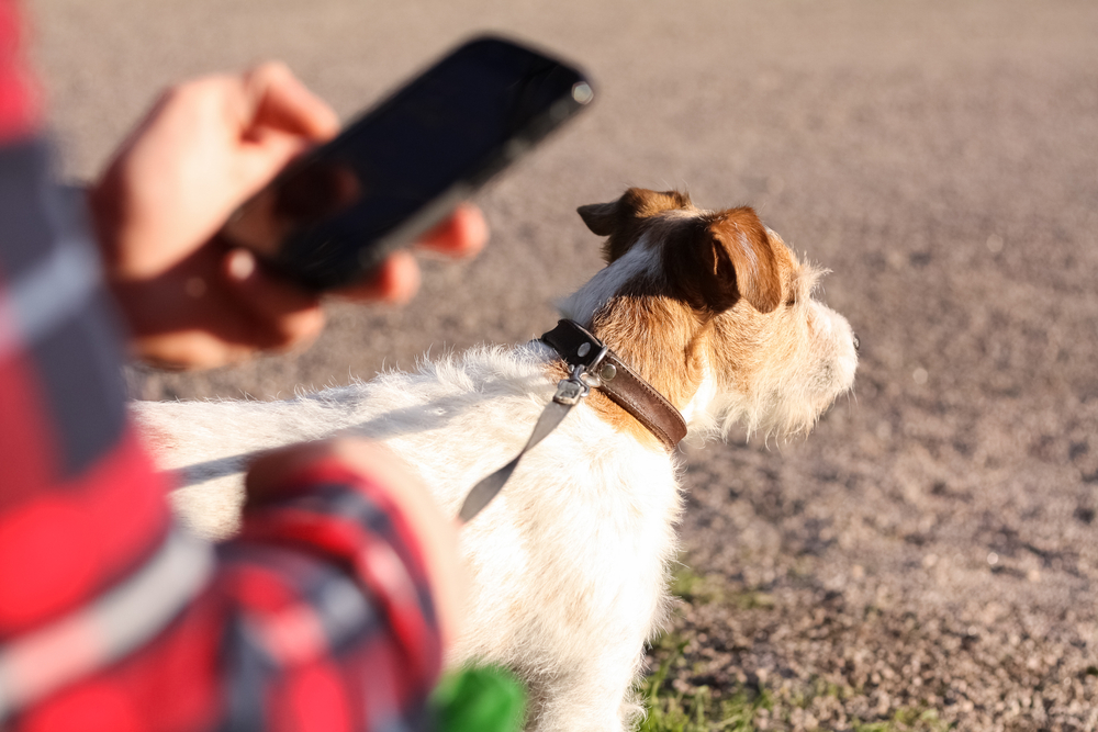 Consumers shop everywhere, even while driving or walking the dog.