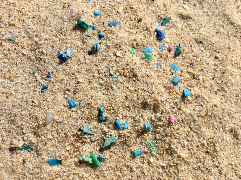 microfibers scattered in sand on beach