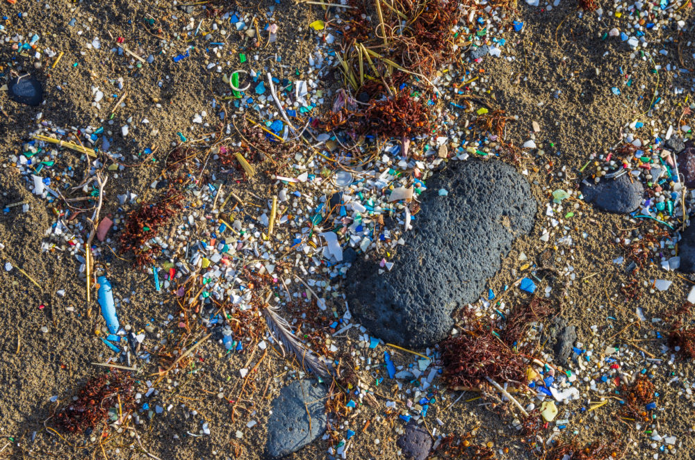 Textile waste makes up over 30 percent of the world's microplastic contamination.