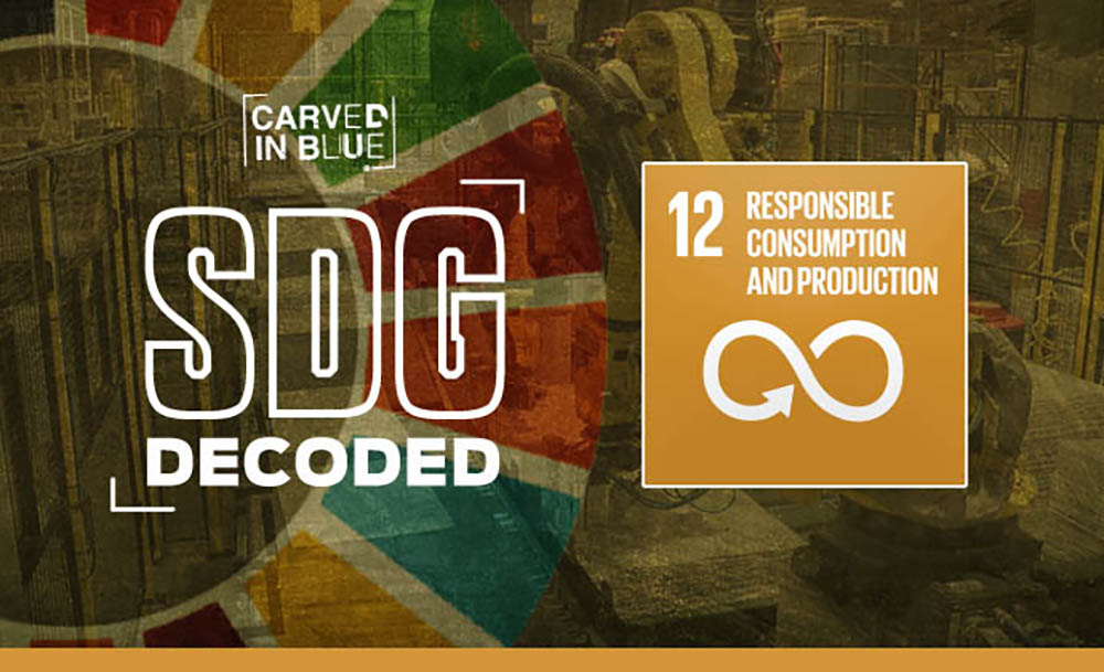 Carved in Blue examines SDG Decoded 12