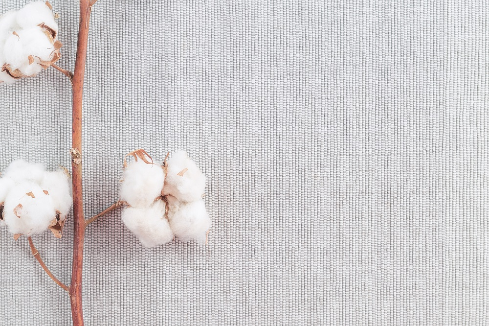 With fiber choice important in raising a brand's sustainability profile, organic cotton is often one of the raw materials being chosen.