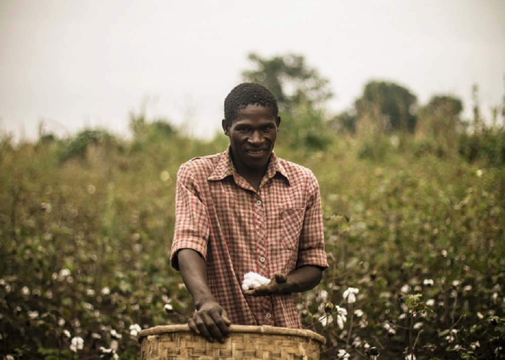 Four key cotton and coffee associations are forming the Delta Project to align the measurement and reporting of sustainability on the farm.