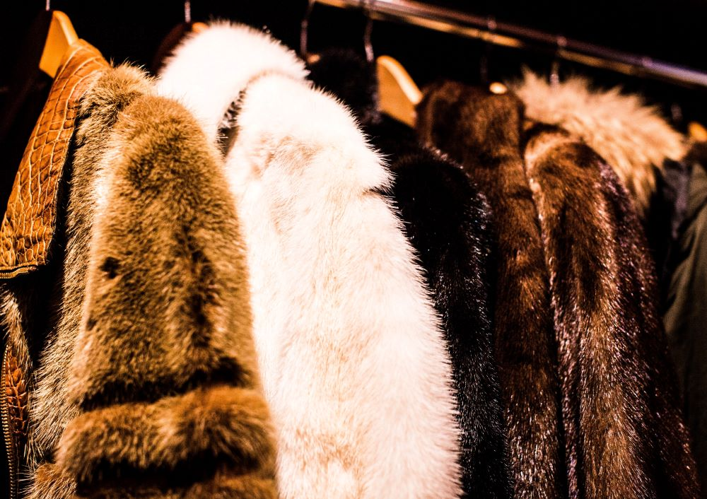 "The International Fur Federation, representing 40 countries, is suing San Francisco for attempting to ""legislate morality"" by banning fur."