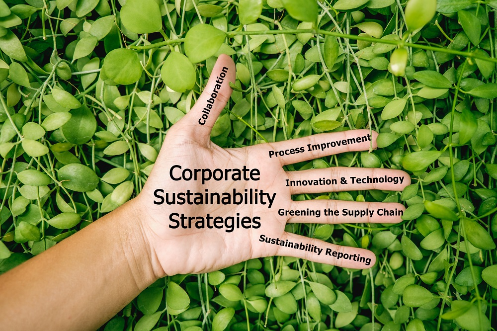 Bain & Company has made a minority investment in EcoVadis, a provider of business sustainability ratings for global supply chains.