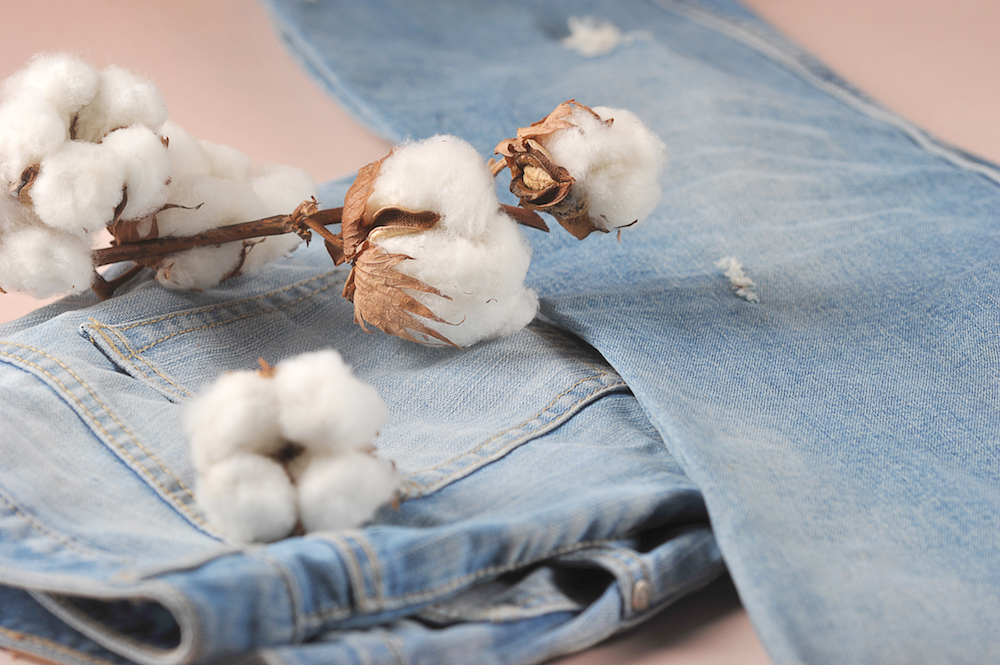 After producing its first pair of jeans with Imogene + Willie, Vidalia Mills will create 500 Made in USA denim jobs by August 2020.
