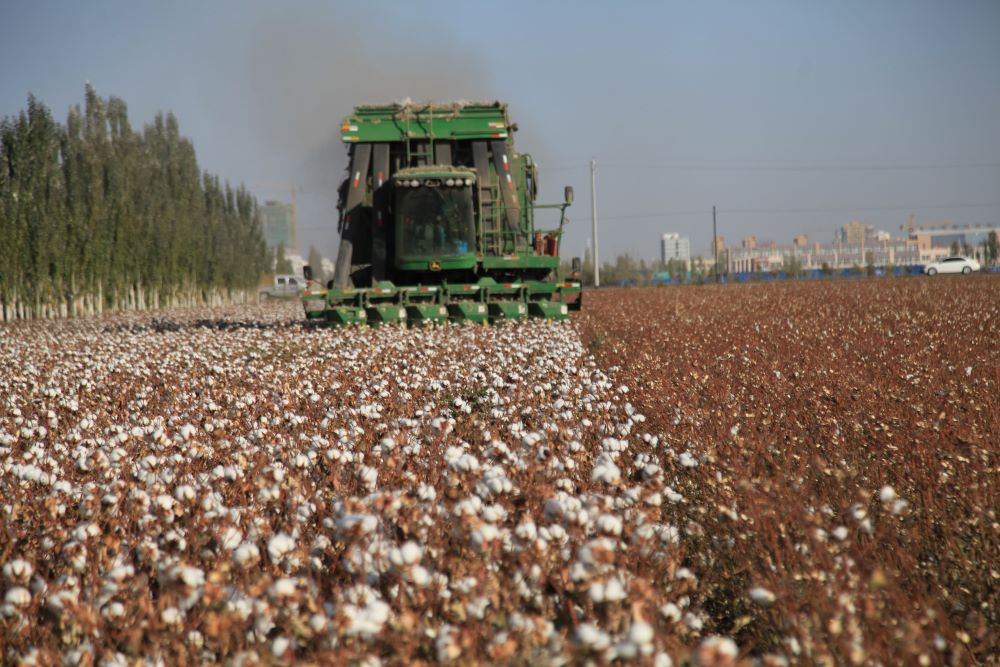 U.S. officials called for a ban on imports from a large swath of northwestern China following reports of forced labor by Turkic Muslims.