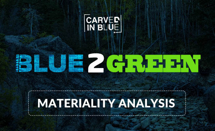 Carved in Blue Materiality Analysis