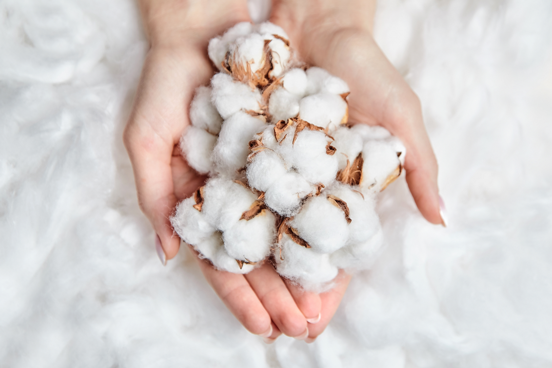 The BCI launched an advisory group with the purpose of providing advice on the development of the Better Cotton Chain of Custody (CoC).