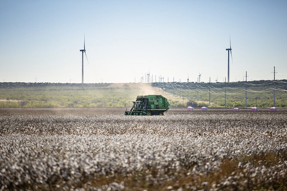Kontoor Brands-owned Wrangler is seeking cotton farmers who can demonstrate tangible benefits from their regenerative agricultural systems.