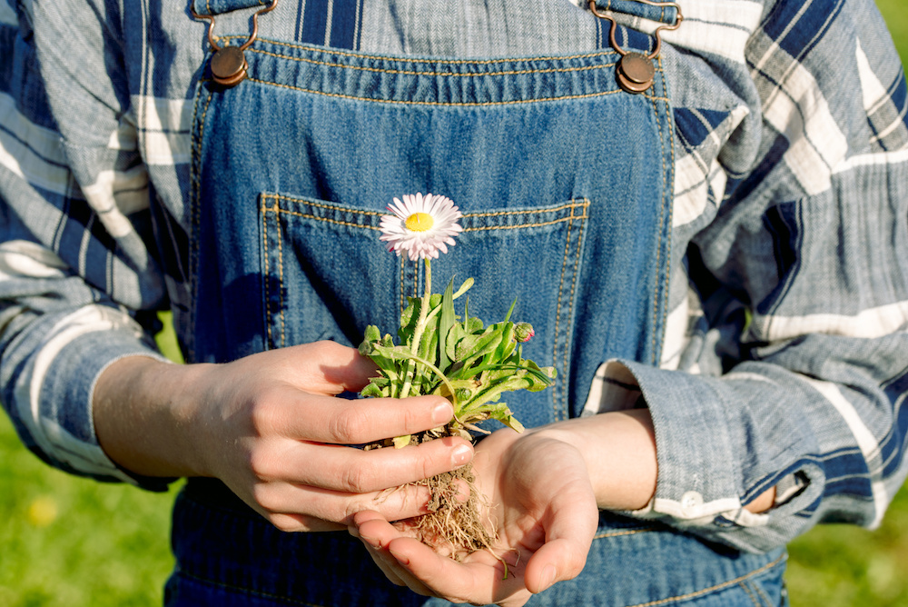 Denim giant Kontoor Brands is doubling down on sustainability efforts with rigorous goals published in its first-ever sustainability report.