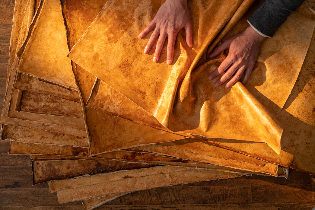 To create Reishi, a class of sustainable material designed to perform like cowhide leather, MycoWorks developed its own proprietary process, in which sheets of Reishi's interwoven mycelium cells from fungi are grown to size and can be finely tuned as it's cultivated.