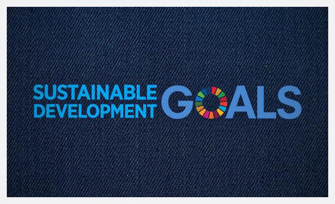 Sustainable Development Goals Orta