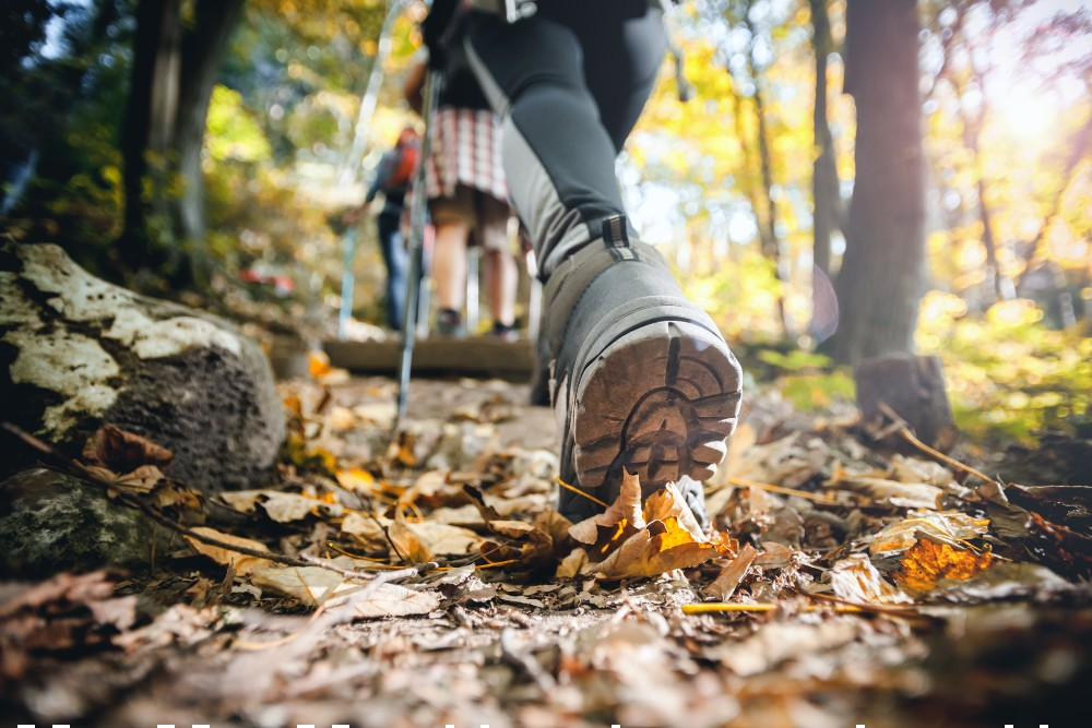 According to the NPD Group, hiking and walking footwear climbed more than 25 percent in the first quarter compared to two years ago