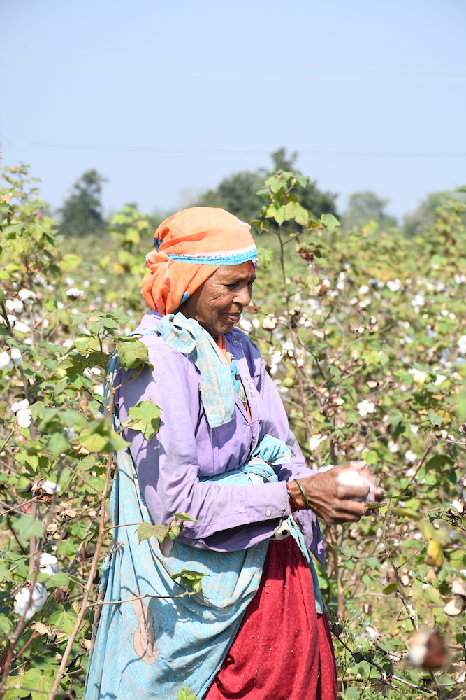 Bestseller will lead in-conversion cotton, the process of supporting farmers in the switch to organic cotton farming.