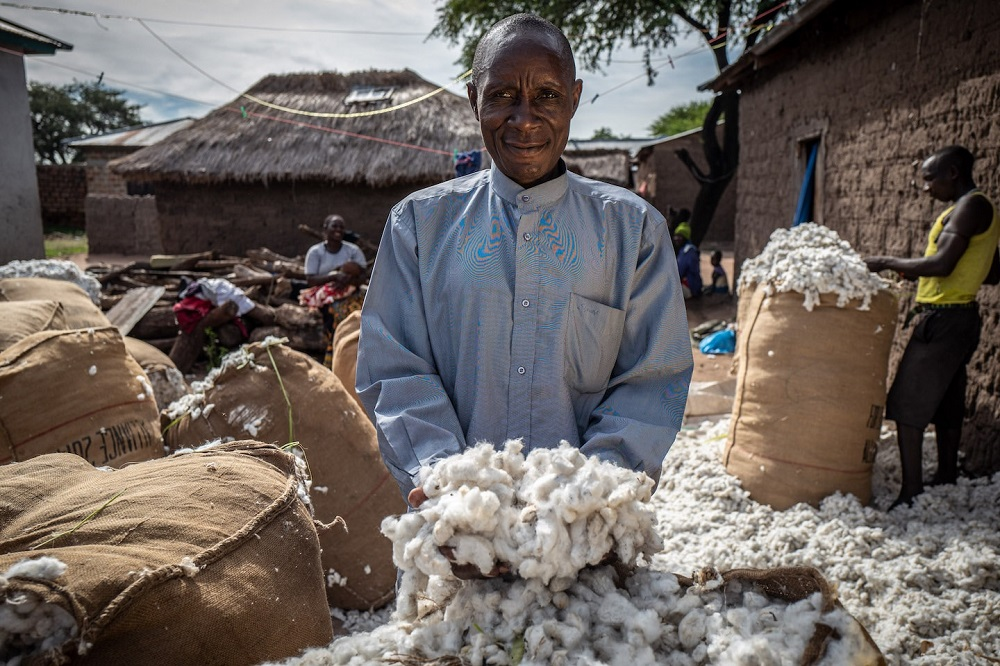 Cotton made in Africa will join forces with the African Cotton Foundation to promote socially and ecologically sustainable cotton.