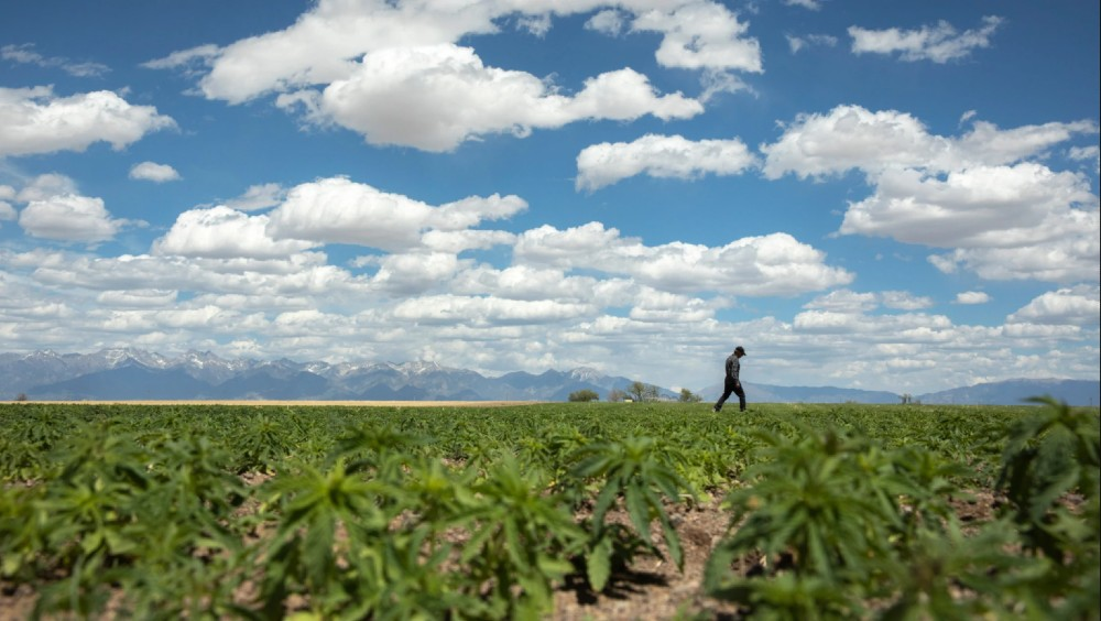 The outdoor label's most recent mission centers around bringing hemp production back to the states—specifically, to Colorado's San Luis Valley.