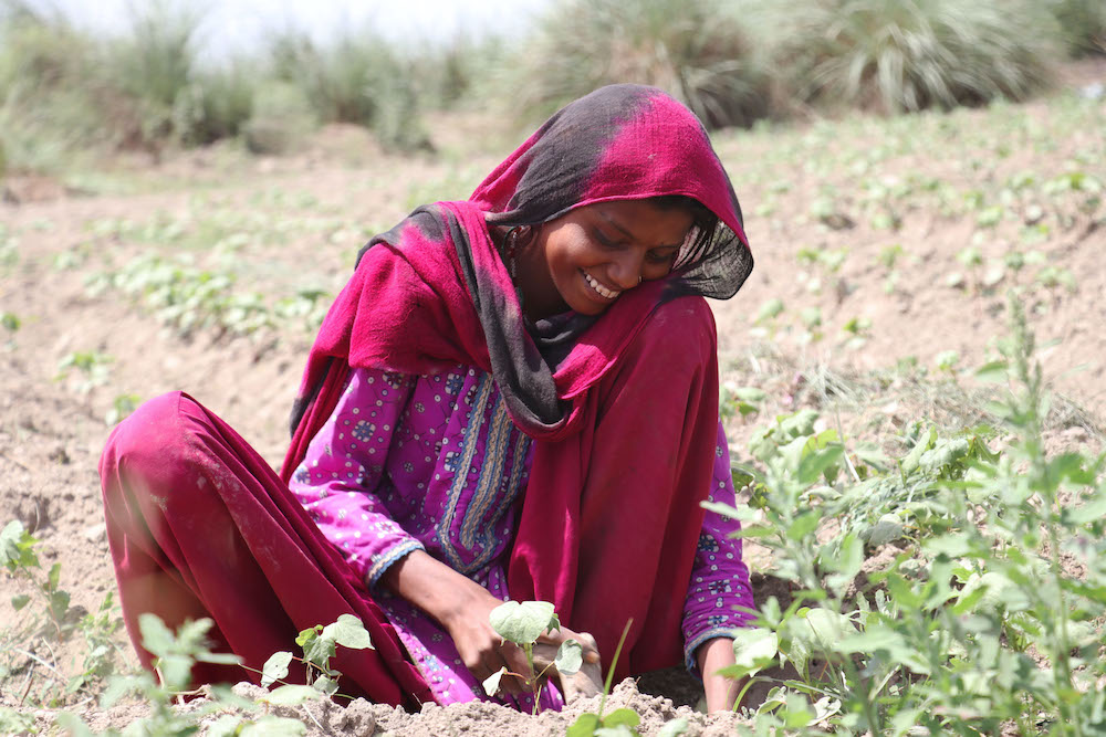 Soorty's Organic Cotton Initiative brings organic farming practices and a better way of life to farmers in the Balochistan, Pakistan region.