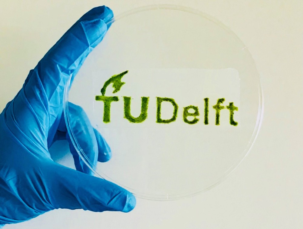 Researchers at Delft University of Technology in the Netherlands have debuted a 3D-printable algae-based material suitable for a number of applications.