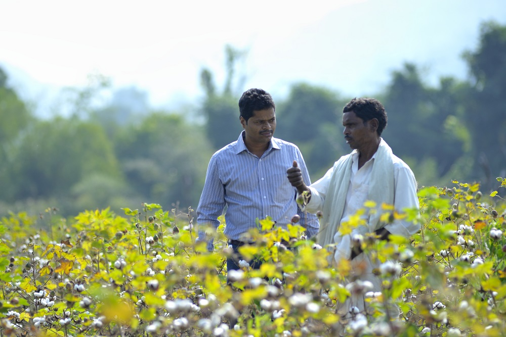 Encouraging farmers switch to organic cotton, the Organic Cotton Accelerator has joined with brands and NGOs for a pilot project in India.
