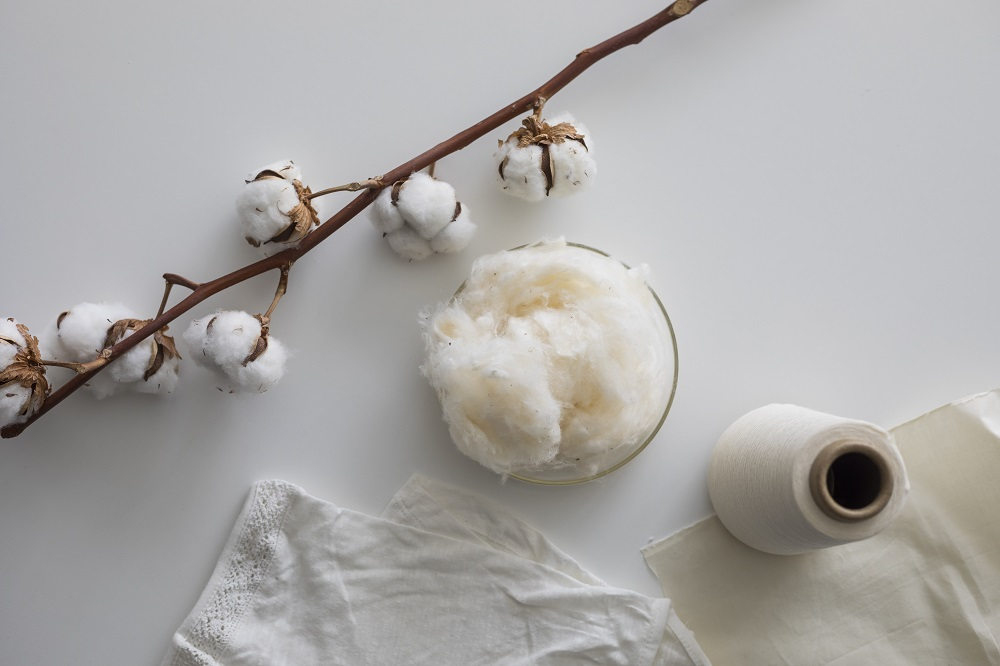 Textile testing partner Hohenstein has developed a new quantification method for identifying genetically modified cotton.