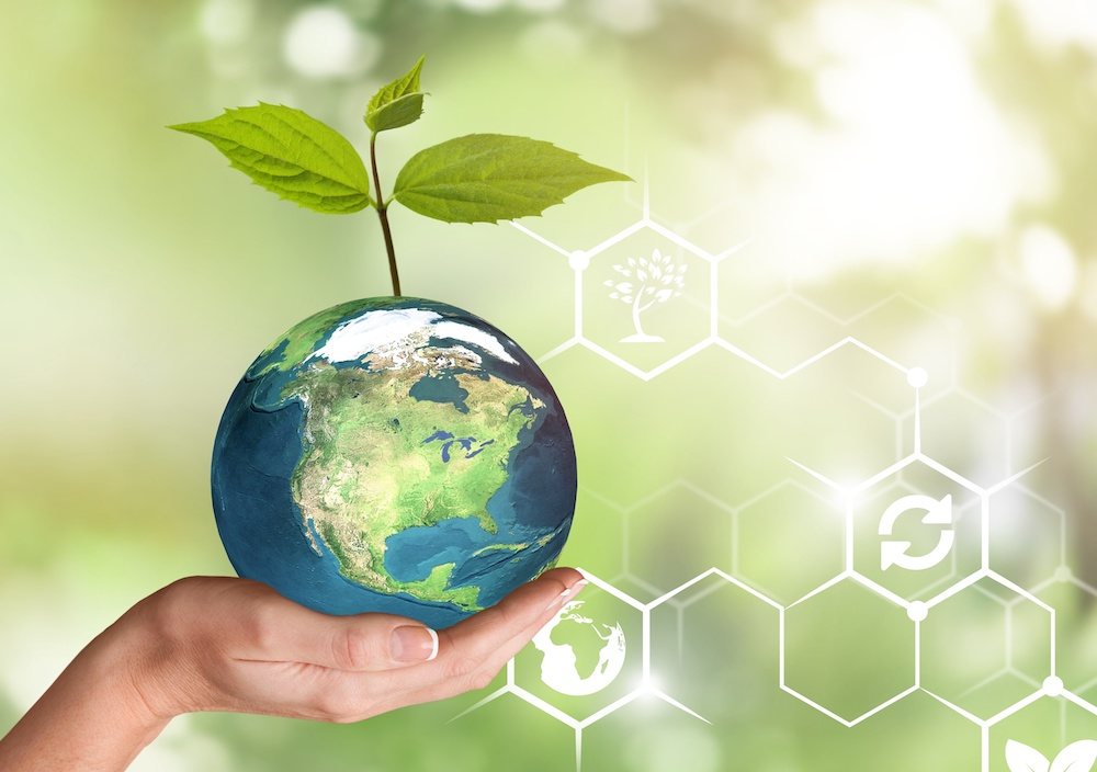 Carbon Offsets sustainability