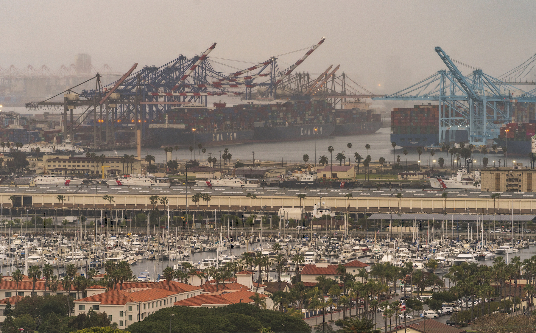 Container cargo ships are seen docked in the Port of Los Angeles.
