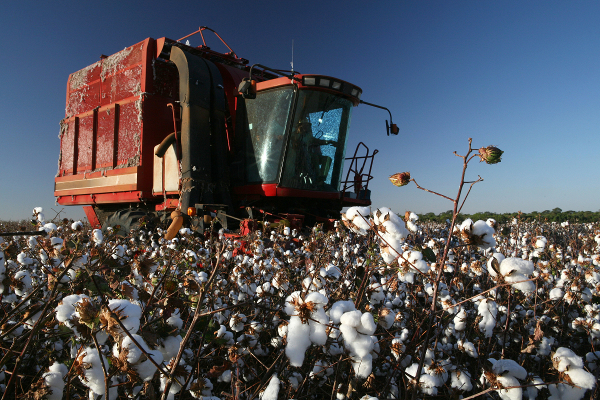Apparel manufacturers already battling supply chain backlogs and delays and badly congested ports now face surging cotton prices.